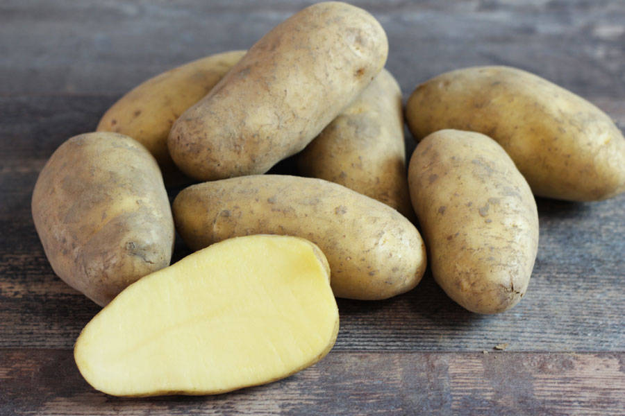 Pomme de terre Annabelle - Ferme de la Concie - La Ruche qui dit Oui ! à la maison