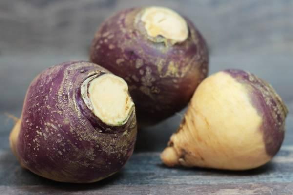 Navets Rutabaga jaune et mauve - Les Légumes de Laura