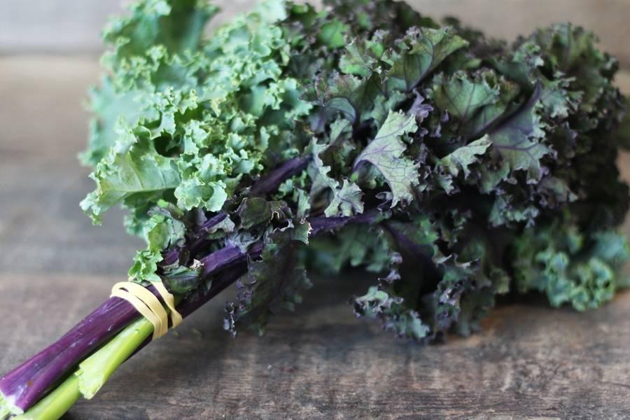 Bouquet de Kale rouge et vert - Le Potager d'Olivier - La Ruche qui dit Oui ! à la maison