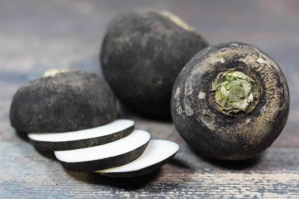 Radis rond Noir BIO - Les potagers de Marcoussis