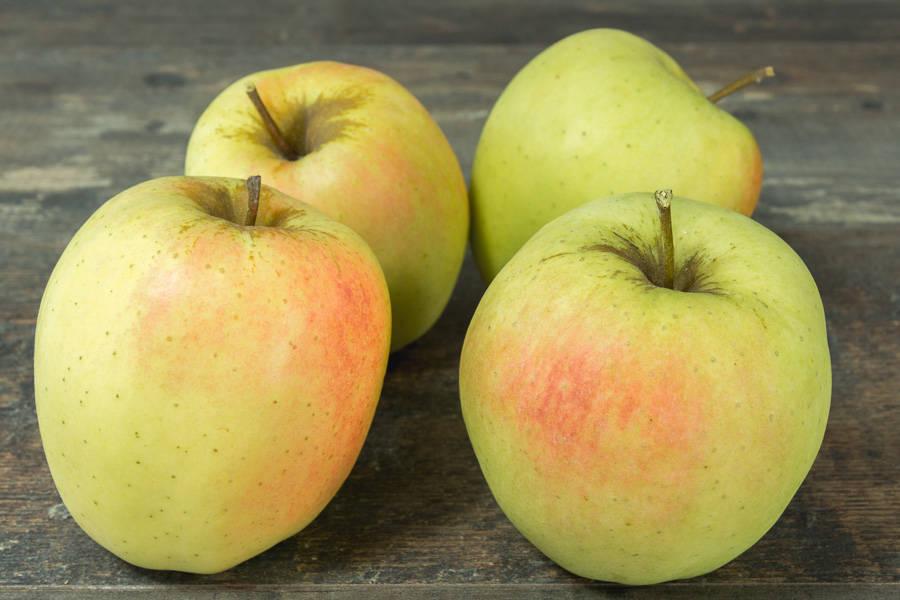 Pomme Golden - Vergers de Pomamour - La Ruche qui dit Oui ! à la maison