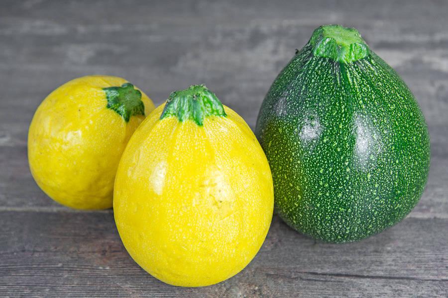 Courgette ronde jaune et verte BIO - Les Légumes de Planche - La Ruche qui dit Oui ! à la maison