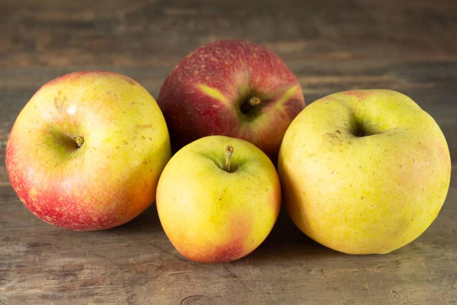 Pomme Dalin Sweet BIO - Maison Gaillard - La Ruche qui dit Oui ! à la maison