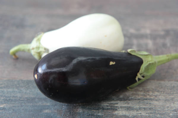 Concombre, courgette, aubergine