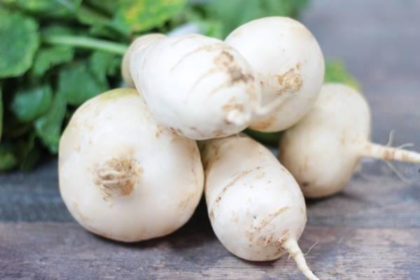 Navets des Vertus Marteau - Les Légumes de Planche