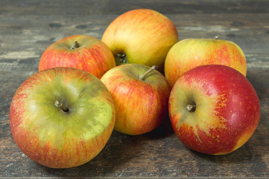Pomme Reine des Reinettes - Vergers de Pomamour - La Ruche qui dit Oui ! à la maison