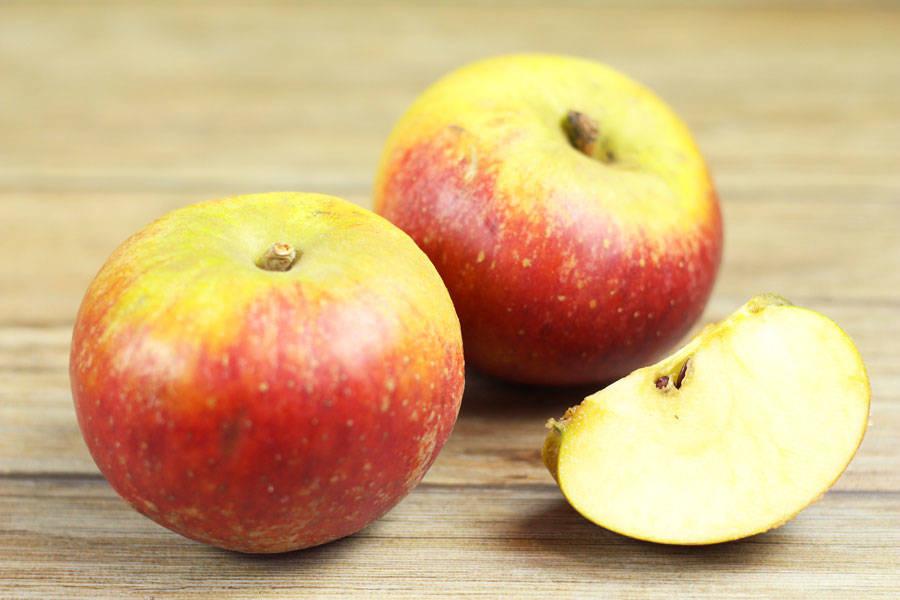 Pomme Suntan - Vergers de Molien - La Ruche qui dit Oui ! à la maison