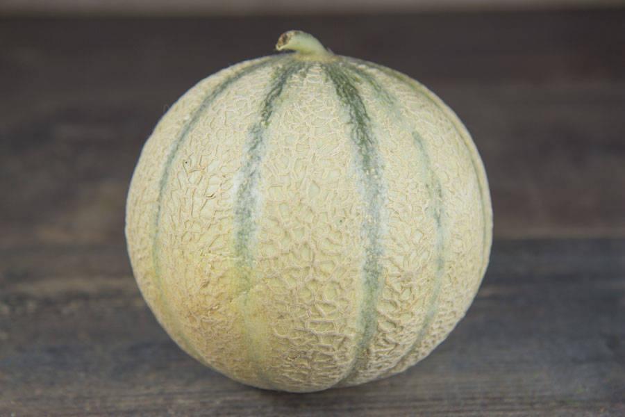 Melon du Quercy IGP - Ferme des Bartioles - La Ruche qui dit Oui ! à la maison
