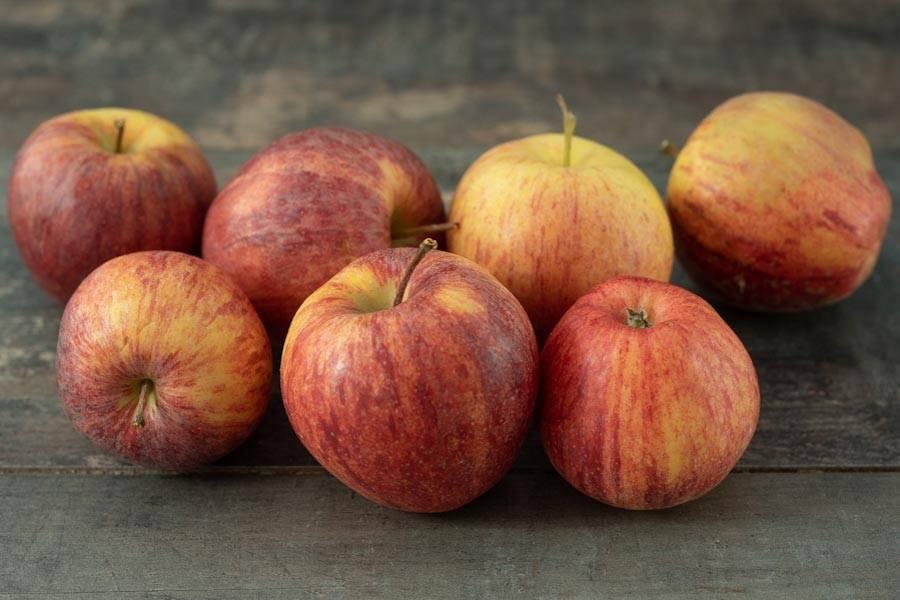 Pomme Royal Gala BIO - Verger du Grand Morin - La Ruche qui dit Oui ! à la maison