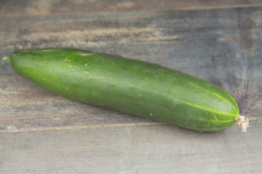Concombre épineux BIO - Les jardins d'Héricourt - La Ruche qui dit Oui ! à la maison