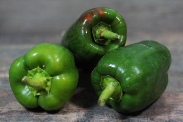Poivron vert BIO - Ferme Lafouasse