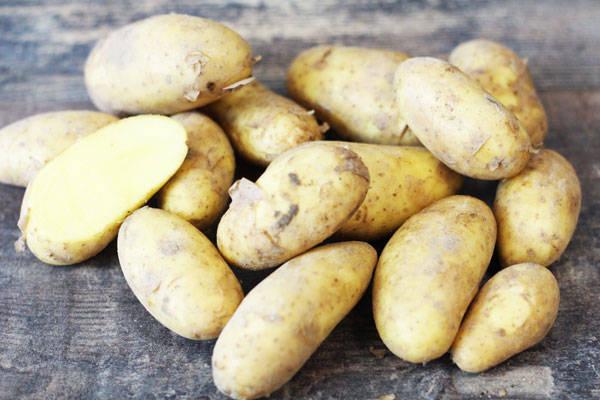 Pommes de terre primeur - Les Légumes de Laura