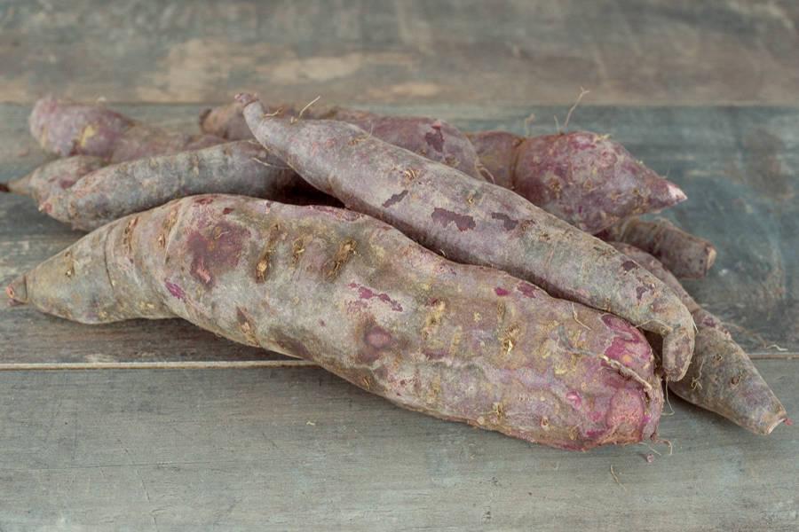 Patate douce Grenat BIO - La Coopérative Bio d'Île-de-France - La Ruche qui dit Oui ! à la maison
