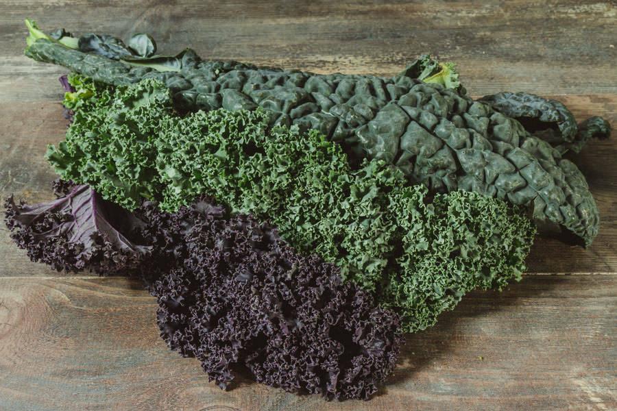 Bouquet de Kale rouge vert et noir de toscane - Le Potager d'Olivier - La Ruche qui dit Oui ! à la maison
