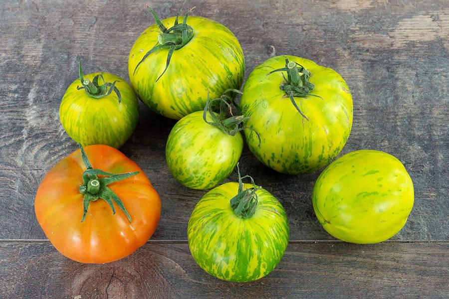Tomates anciennes BIO - Les jardins de Courances - La Ruche qui dit Oui ! à la maison