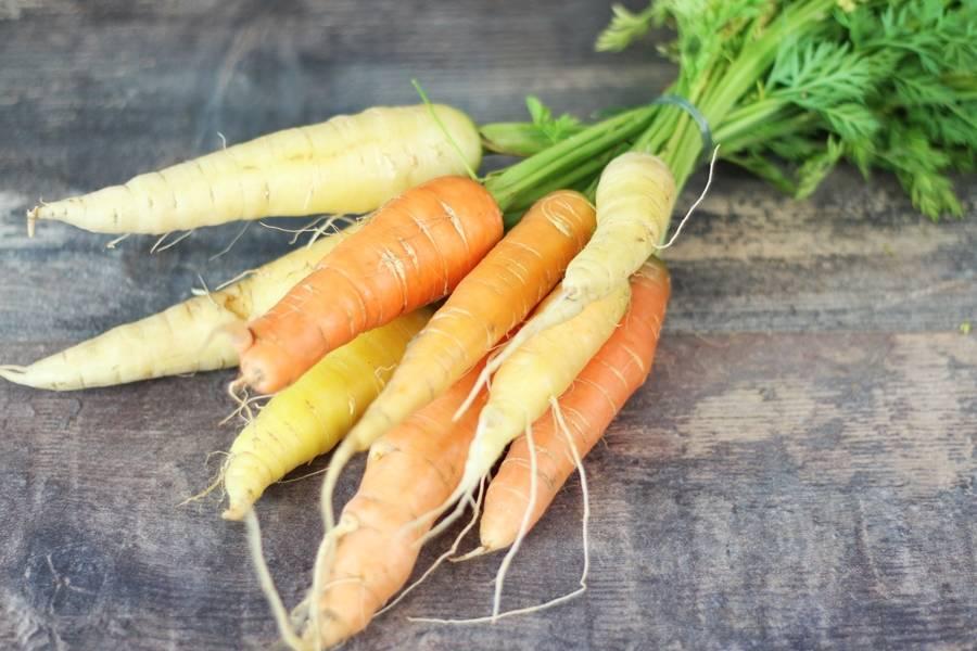 Botte de carottes BIO - Les Légumes de Planche - La Ruche qui dit Oui ! à la maison