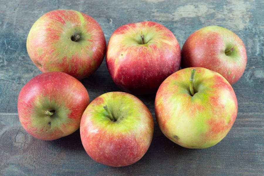 Pomme Elstar BIO - Verger du Grand Morin - La Ruche qui dit Oui ! à la maison