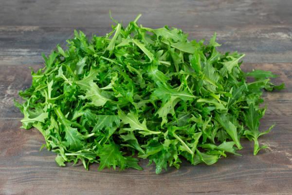 Herbe et salade
