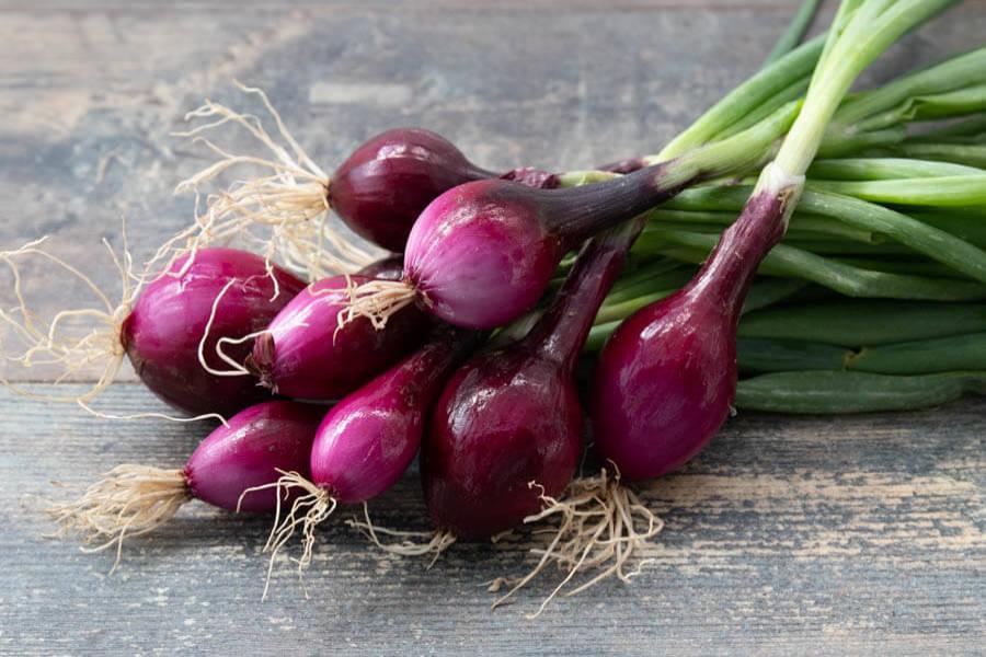 Botte d'oignons rouges (en conversion BIO) - Cueillette Varet - La Ruche qui dit Oui ! à la maison