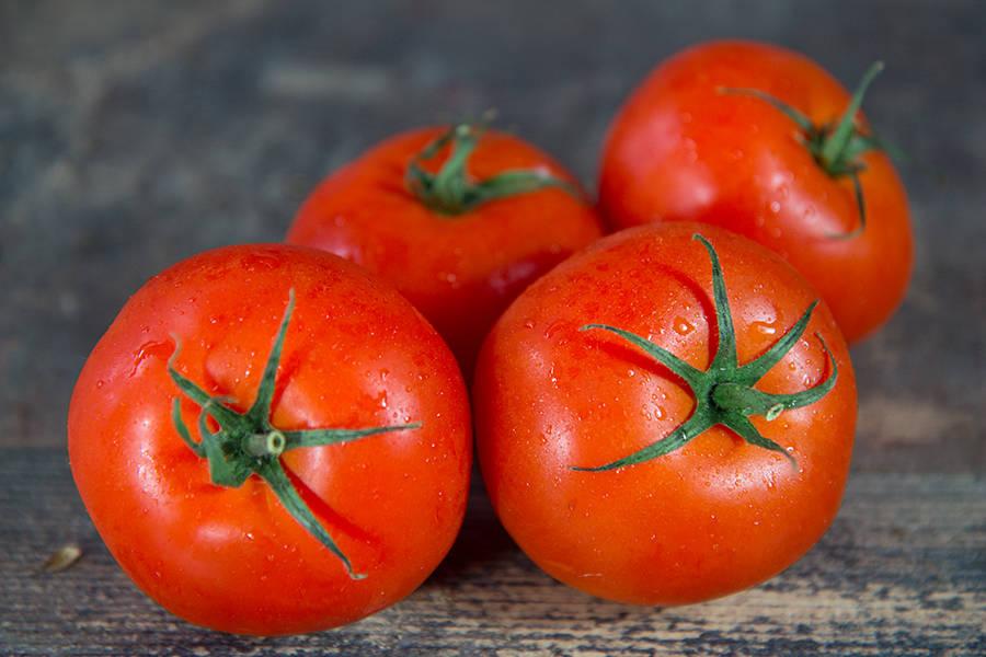Tomate ronde - EARL du Châtaignier - La Ruche qui dit Oui ! à la maison